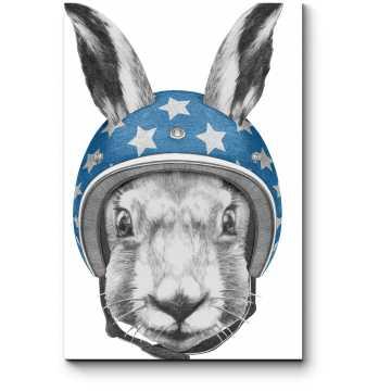 Заяц в шлеме