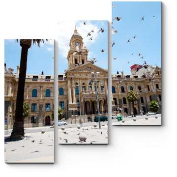 Модульная картина Летящие голуби над площадью Кейптауна