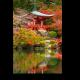 Гармония линий и цвета, Киото