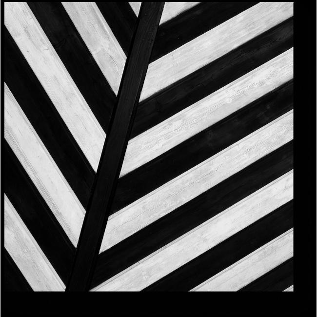 Модульная картина Черно-белый лист