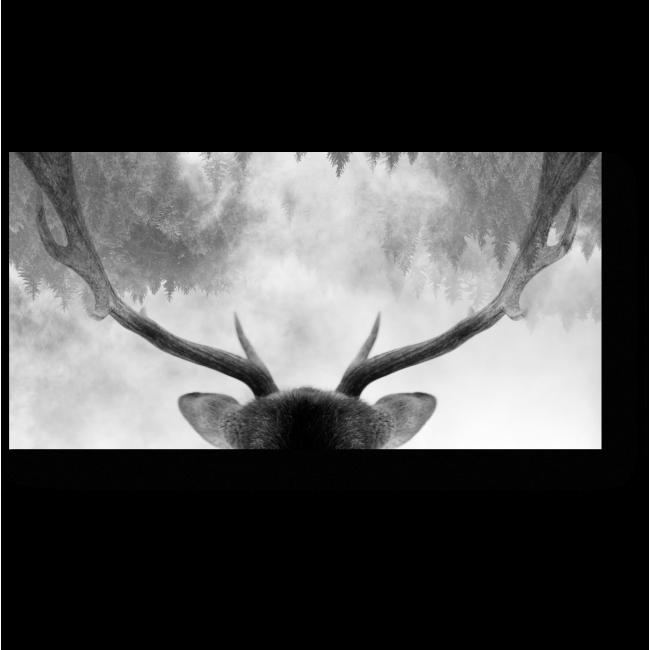 Модульная картина Лесной житель