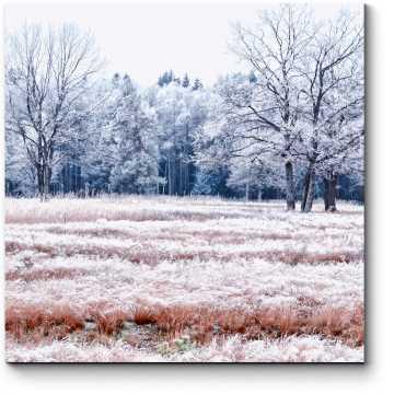 Зимний снежный лес