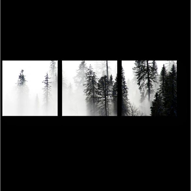 Модульная картина Лес в утреннем тумане