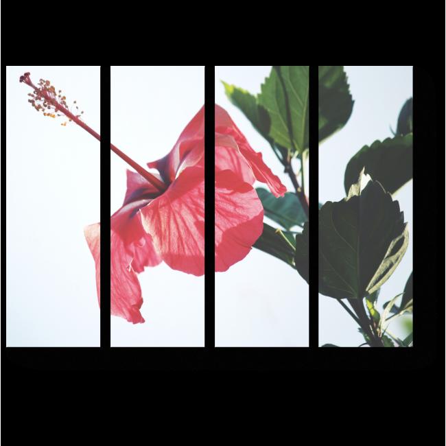 Модульная картина Красный цветок