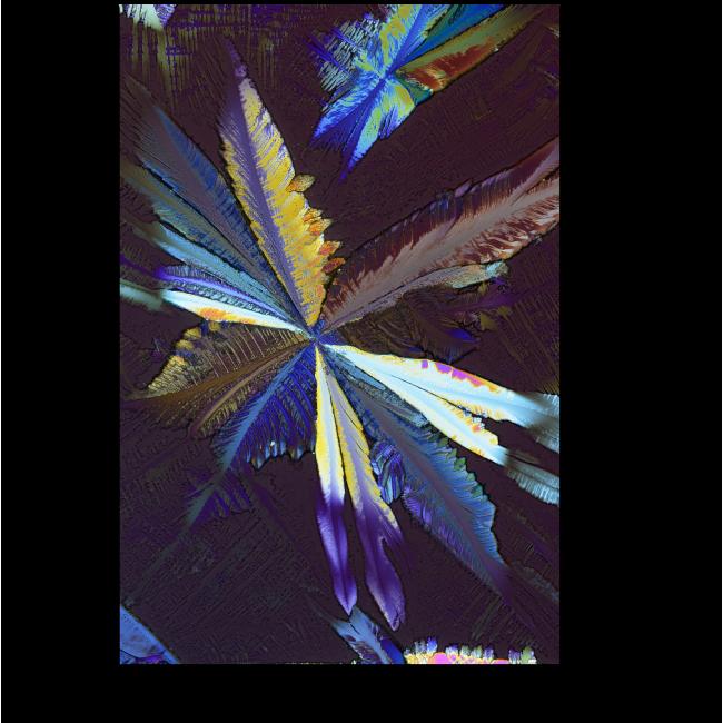 Модульная картина Макрокристаллы