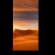 Золотая пустыня