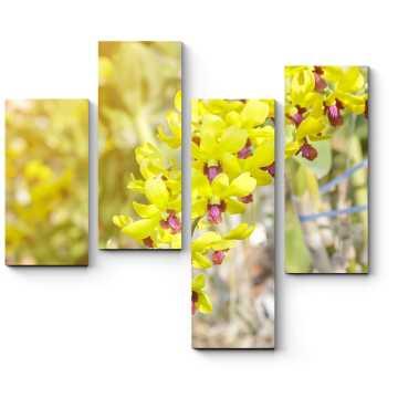 Модульная картина Цветок Таиланда