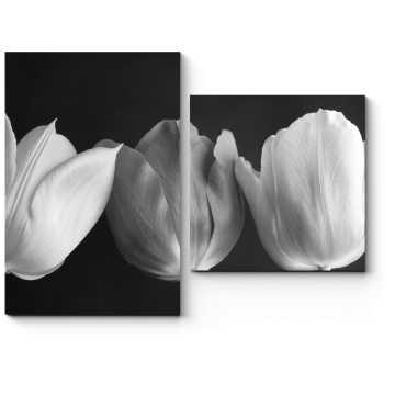 Модульная картина Монохромные тюльпаны