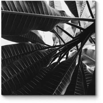 Модульная картина Скрываясь в тени растений