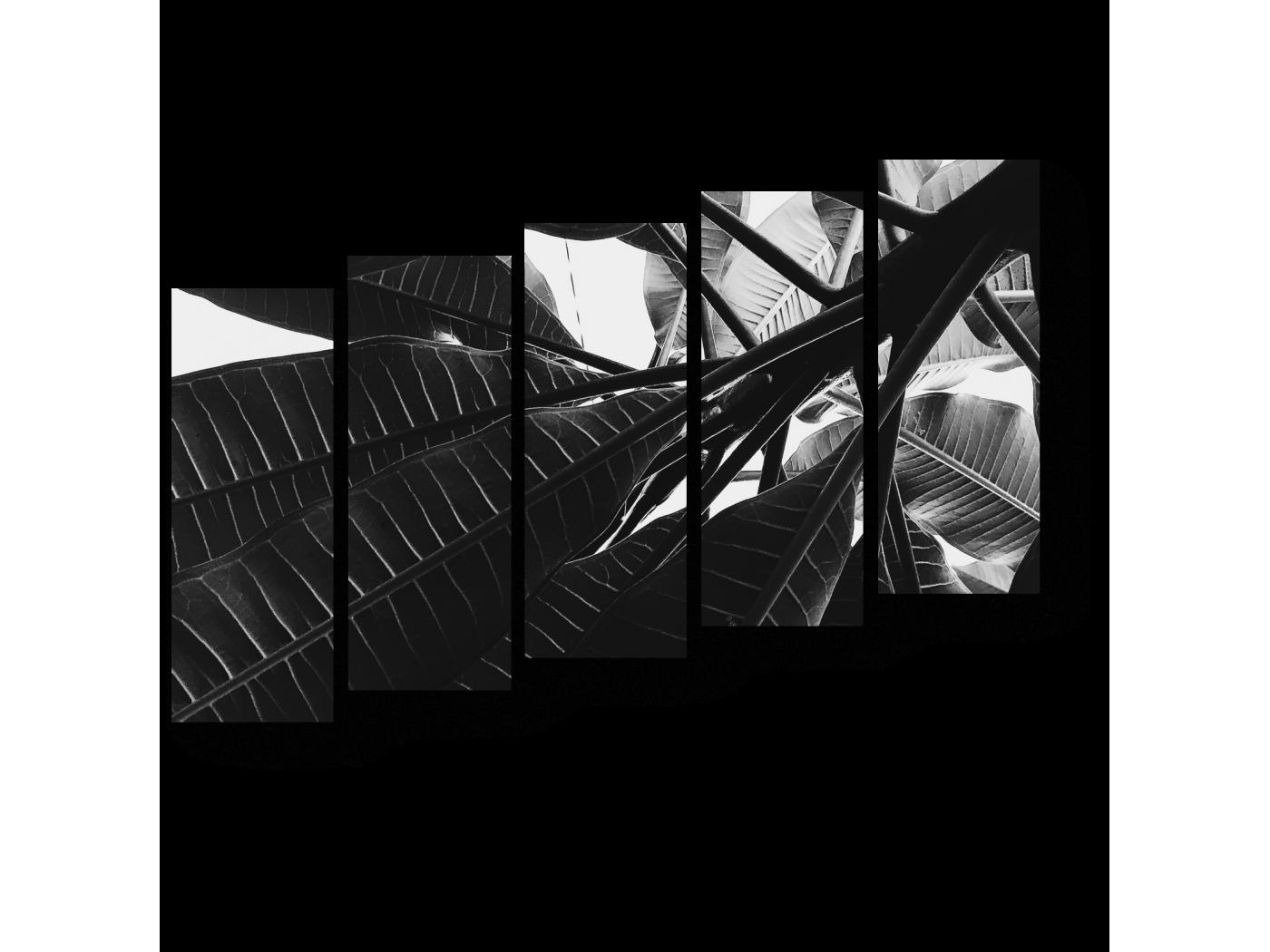 Модульная картина Скрываясь в тени растений (90x63) фото