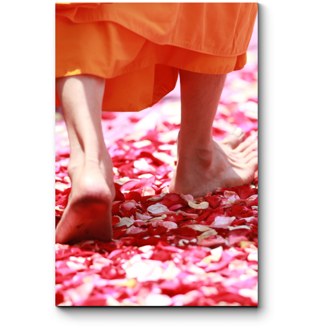 Модульная картина Ноги монаха
