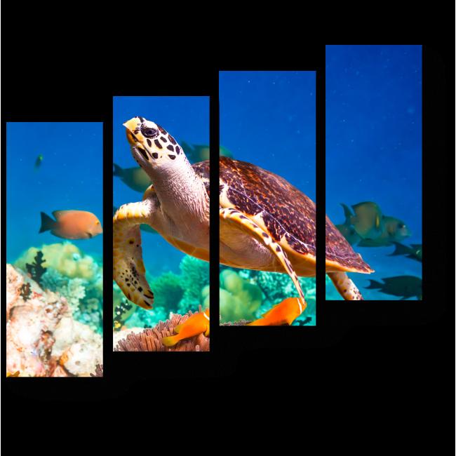 Модульная картина Черепаха в коралловом рифе