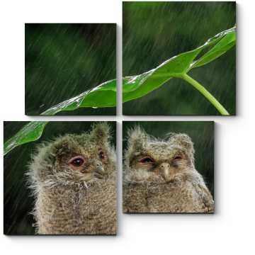 Модульная картина Под дождем