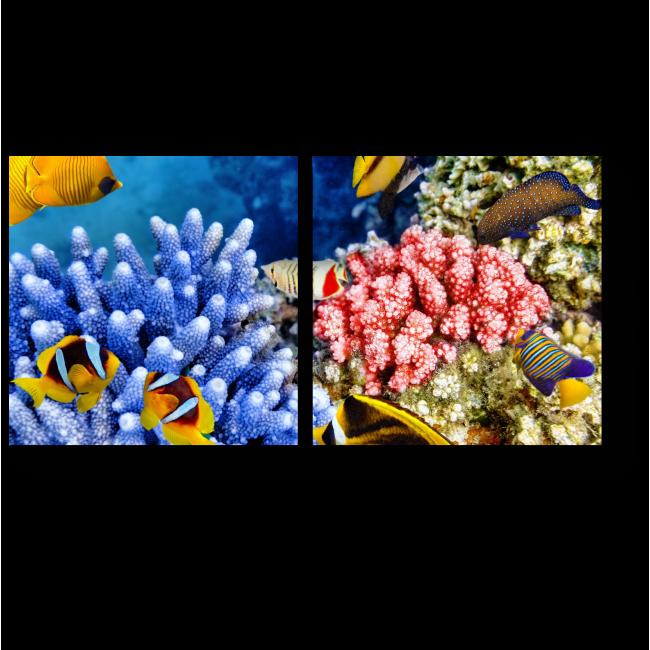 Модульная картина Кораллы