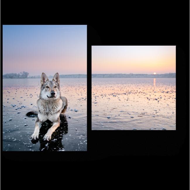 Модульная картина Зимний закат