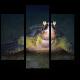 Зеленая черепаха ночью