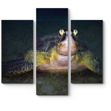 Модульная картина Зеленая черепаха ночью