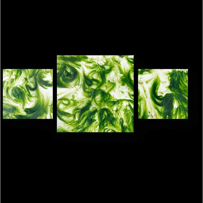 Модульная картина Филиппинские водоросли