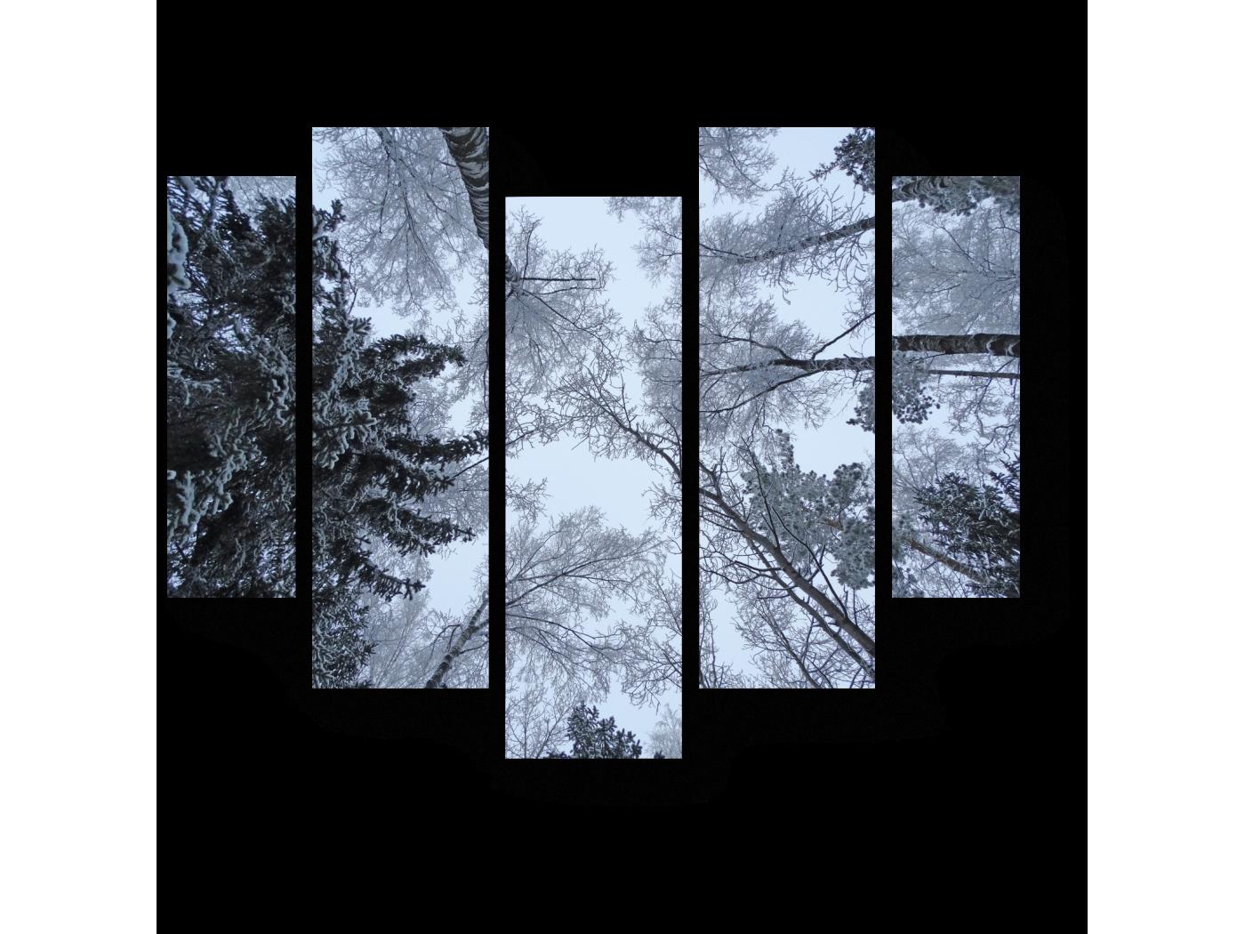 Модульная картина Ветви сплелись (101x82) фото