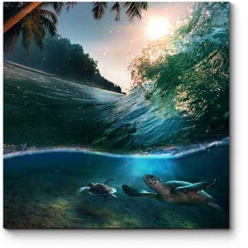 Зеленые черепахи, плывущие под волной