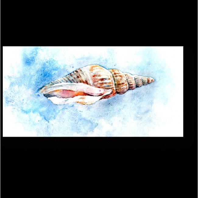Модульная картина Акварельная ракушка