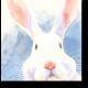 Акварельный кролик