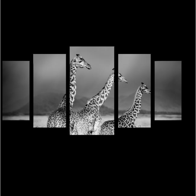 Модульная картина Три жирафа