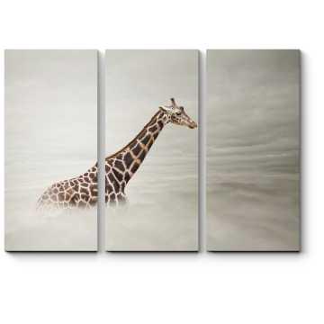 Жираф в тумане