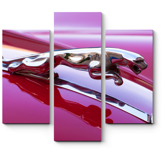 Модульная картина Деталь Ягуара XK140