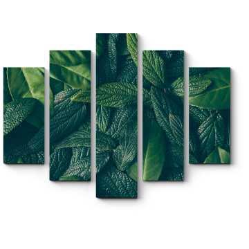 Модульная картина Зеленые сочные листья
