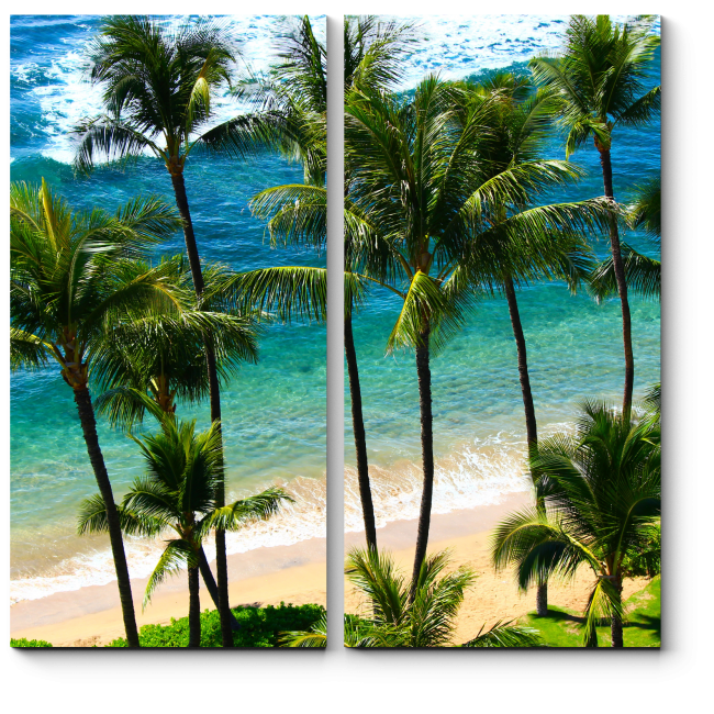 Модульная картина Тропический рай на земле