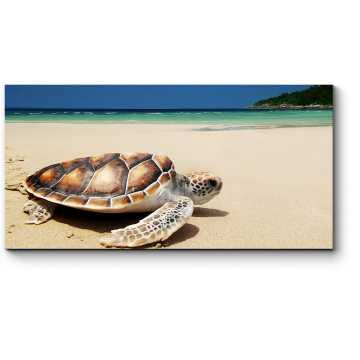 Модульная картина Черепаха принимает солнечные ванны