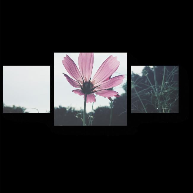 Модульная картина Полевой цветок