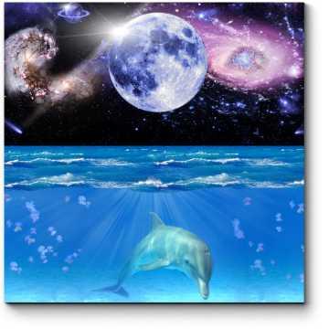 Модульная картина Сладкий сон дельфина