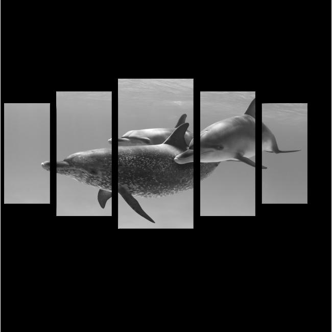 Модульная картина Трио пятнистых дельфинов