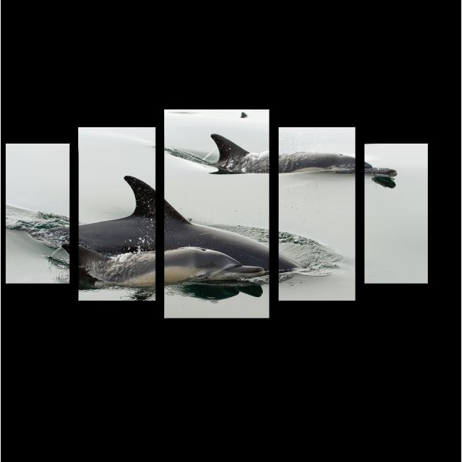 Модульная картина Счастливая семья дельфинов