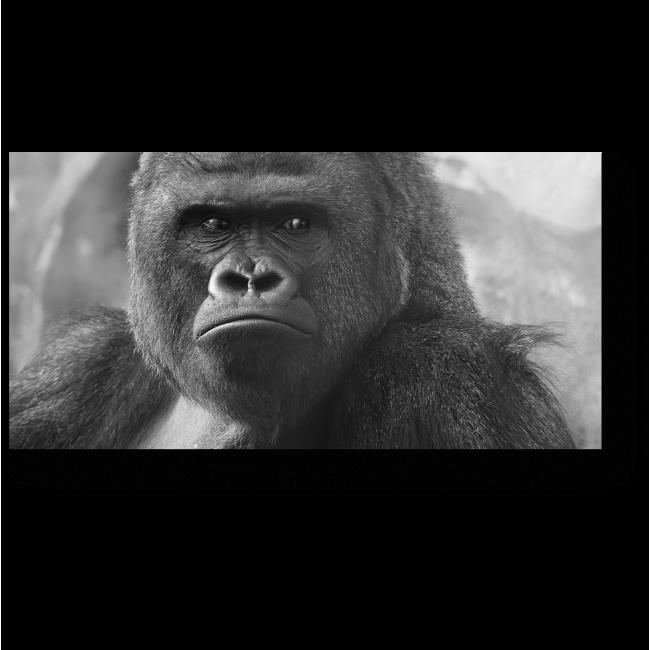 Модульная картина Возвращение Кинг-Конга