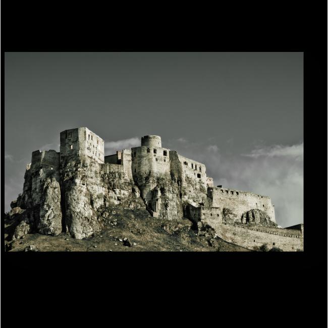 Модульная картина Спицкий замок