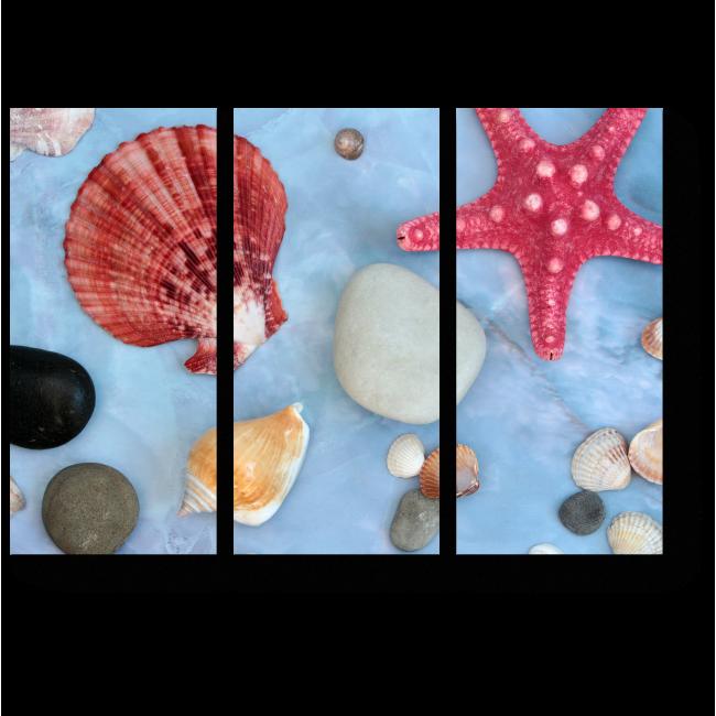 Модульная картина Сокровища морей