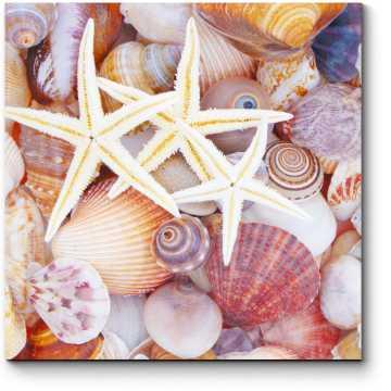 Вся красота моря