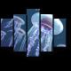 Парящие медузы