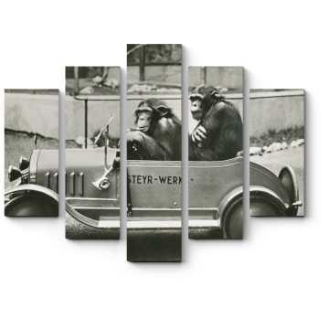 Модульная картина Шимпанзе рулят