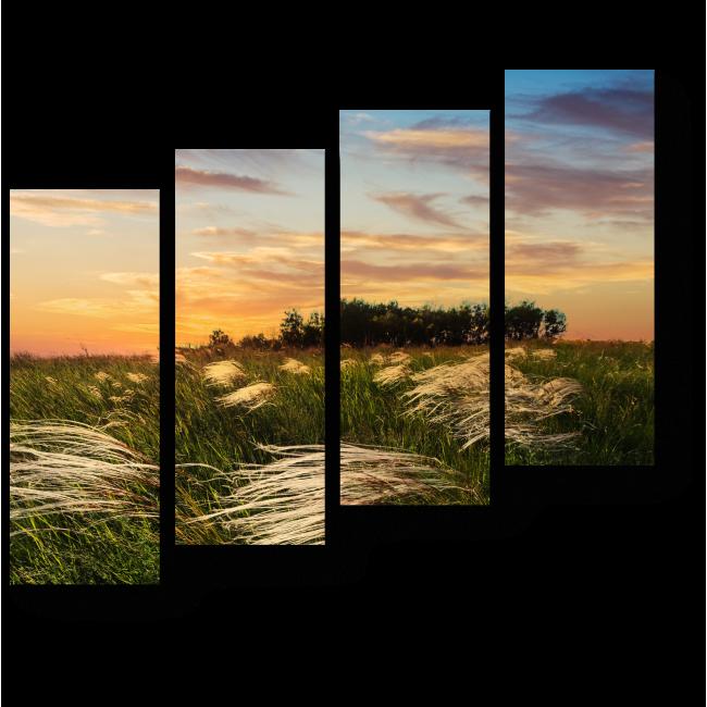 Модульная картина Закат в поле