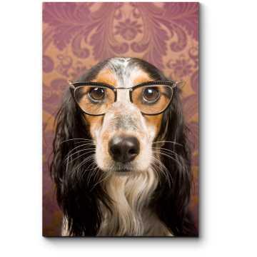 Модульная картина Серьезный взгляд через очки