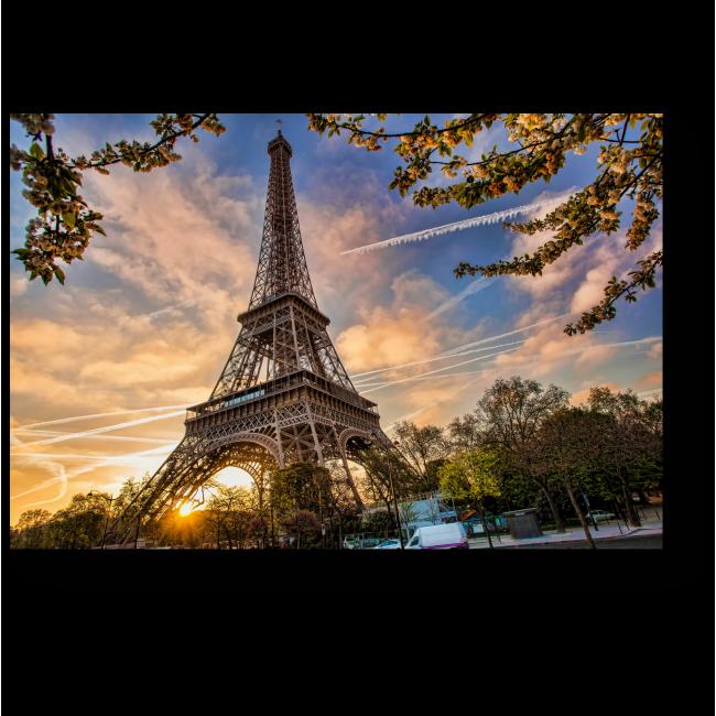 Модульная картина Цветущий Париж