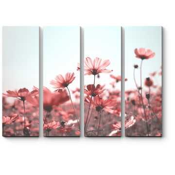 Розовое поле цветов