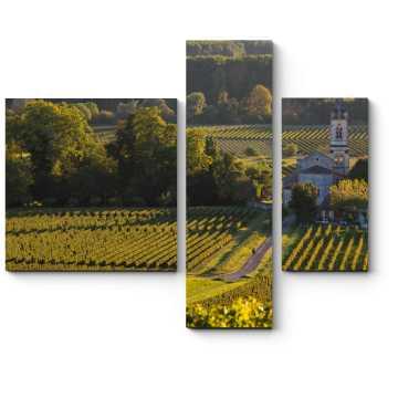 Пейзаж с виноградниками