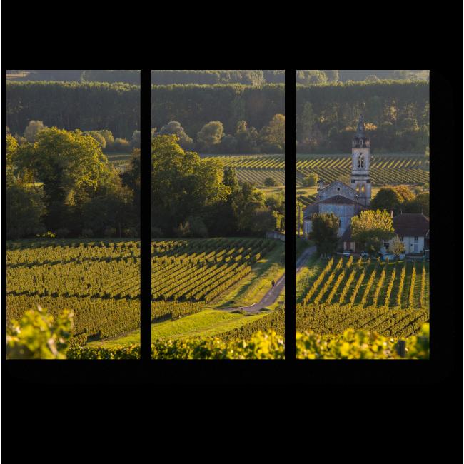 Модульная картина Пейзаж с виноградниками