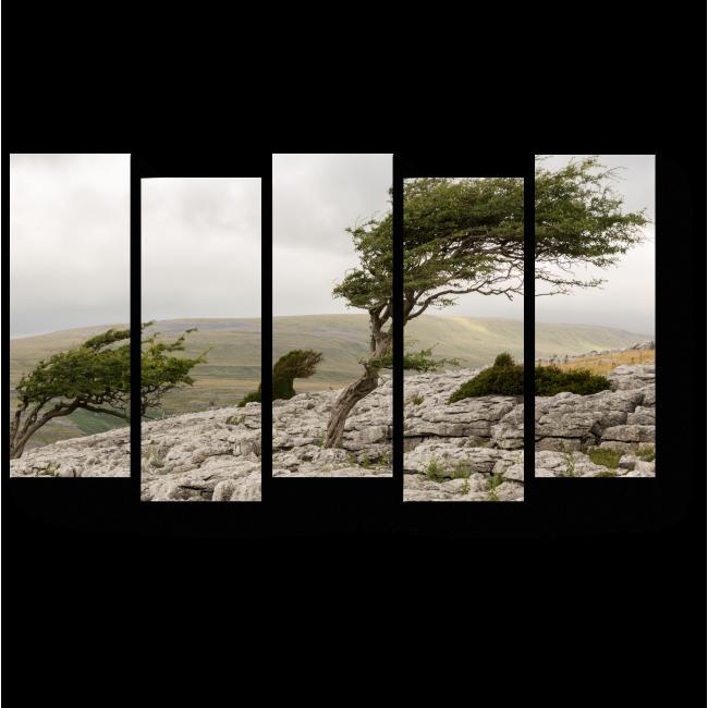 Модульная картина Мощный ветер