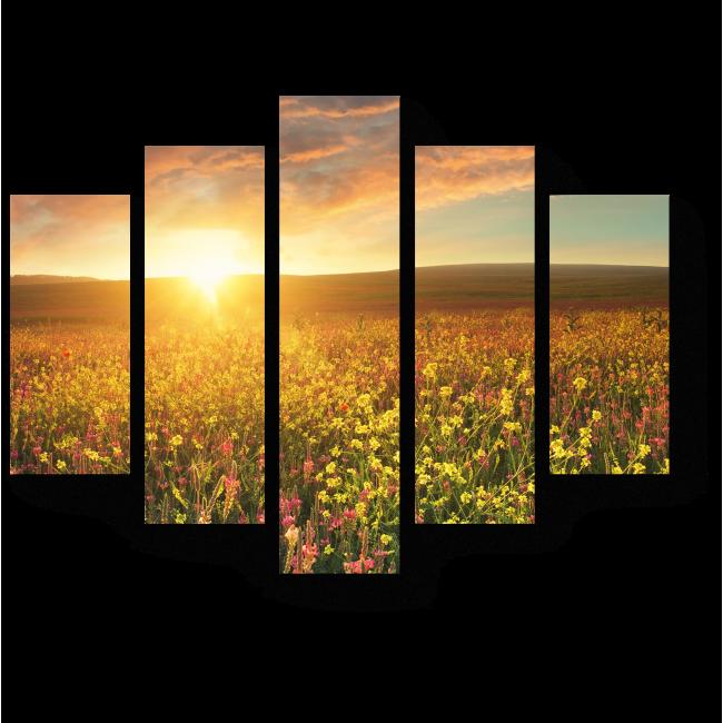 Модульная картина Прекрасный летний закат